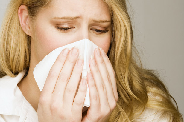 Allergen Relief Treatment For Carpeting, Upholstery, And Mattresses In SW Florida