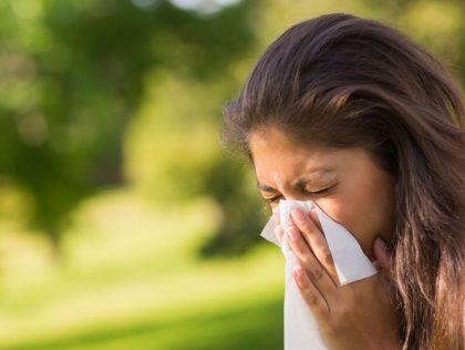 Indoor Allergies In SW Florida?  We Can Help!
